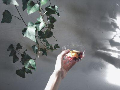 Fruits glacés