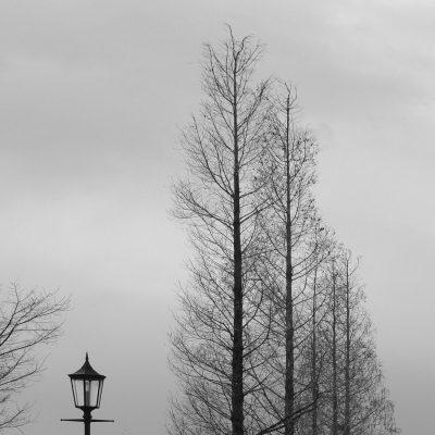 Silhouette de la Promenade